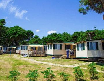 Mobile Homes ARENA MEDULIN